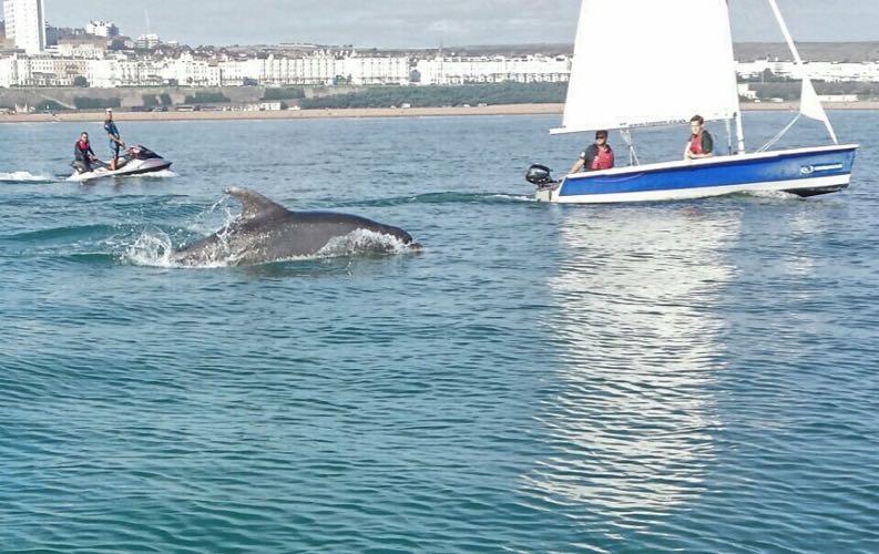 enjoy water sports at Brighton marina with lagoon water sports company